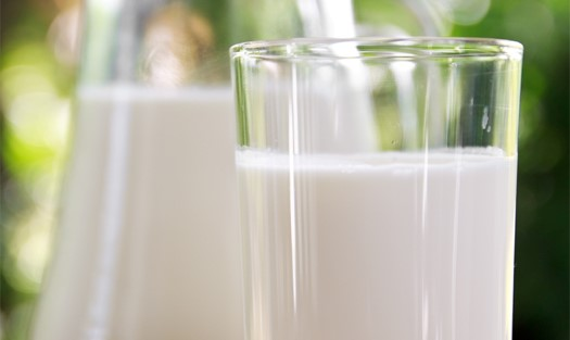 Food processing & industrial liquids filtration Distributed by Salvocorp